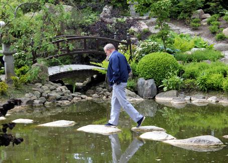 Børge på trædesten i en af de kønne søer i den Japanske have. - Nej, han fik ingen våd sok … Foto: P.H. Seifert.